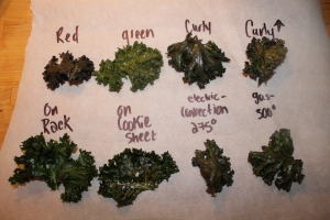 my kale chip experiment